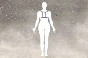 gemini body